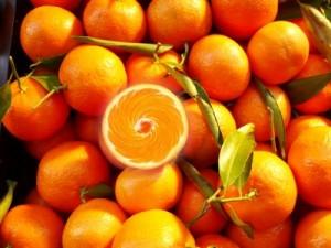 clementine n hrwerte clementine hybrid clementine. Black Bedroom Furniture Sets. Home Design Ideas