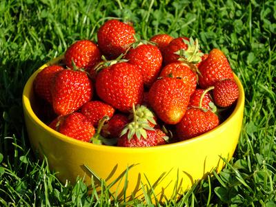 erdbeere n hrwerte erdbeere kalorien erdbeere kohlenhydrate kalorien guru. Black Bedroom Furniture Sets. Home Design Ideas