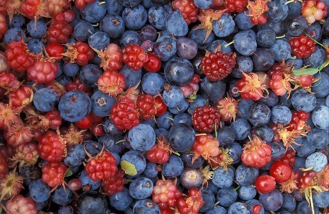 Kalorientabelle Obst